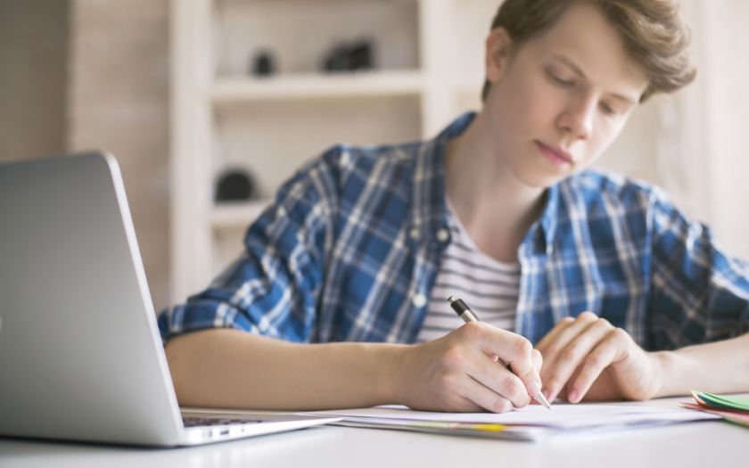 Some Suggestions For Writing The Essay